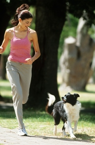 run with border collie