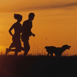 run with dog