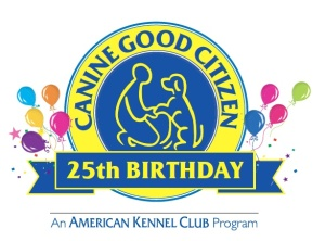 25th birthday logo