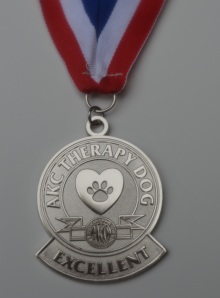 thd excellent (silver) medal