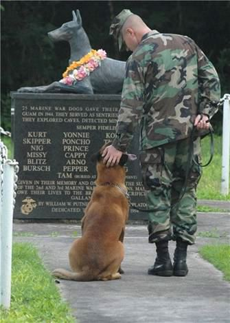 Marine & dog memorial
