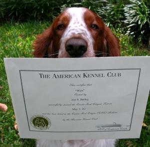 Wyn-blur CGC certificate copy 2