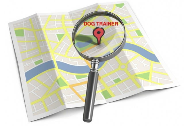 dog trainer map