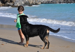 kid meets dog - beach