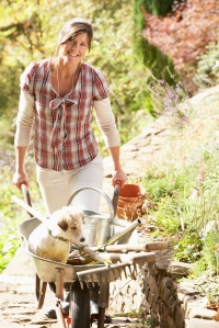 Woman With Dog Having Coffee Break Whilst Working Outdoors In Garden